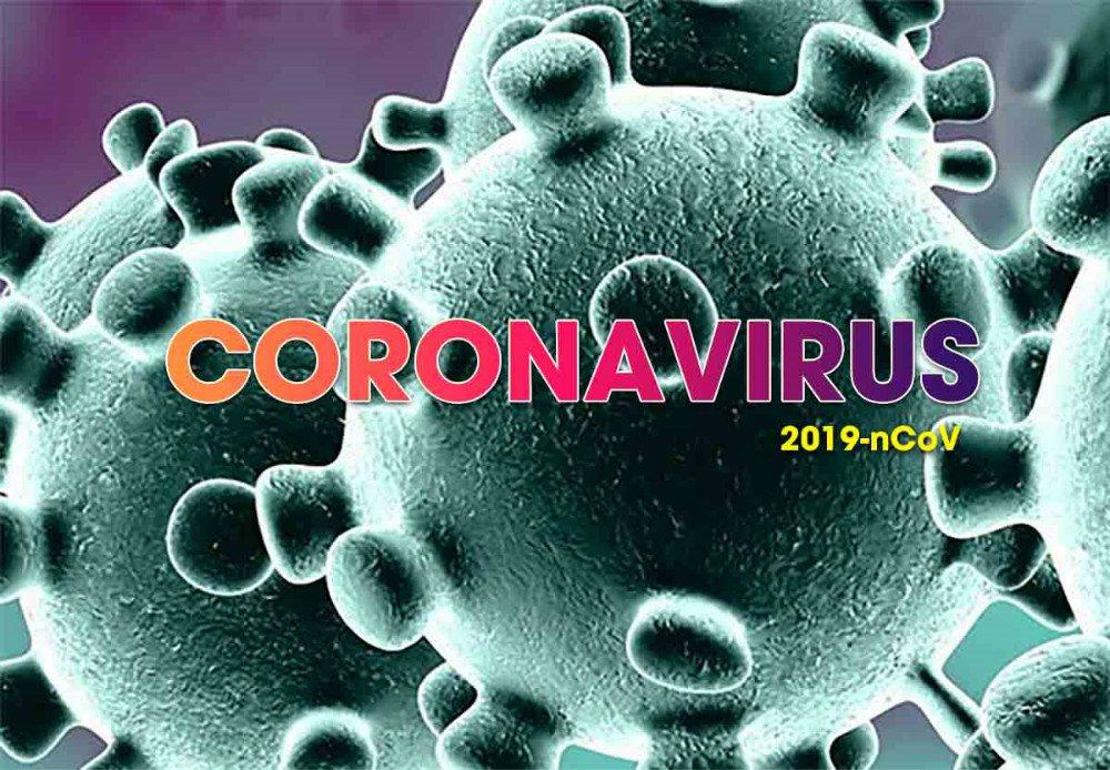 Đại cương về Corona Virus